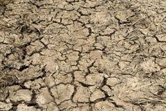 Ξεράνετε το ραγισμένο χώμα καμία βροχή Στοκ φωτογραφία με δικαίωμα ελεύθερης χρήσης