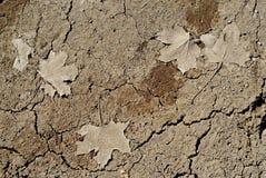 ξεράνετε το χώμα Στοκ εικόνα με δικαίωμα ελεύθερης χρήσης