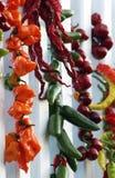 ξεραίνοντας πιπέρια καρπών &ta Στοκ Φωτογραφίες