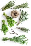 Ξεραίνοντας φρέσκες χορτάρια και πρασινάδα για τα τρόφιμα καρυκευμάτων στο άσπρο κουζινών γραφείων σχέδιο άποψης υποβάθρου τοπ Στοκ Φωτογραφία