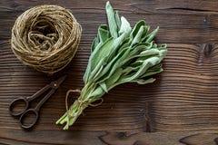 Ξεραίνοντας φρέσκες χορτάρια και πρασινάδα για τα τρόφιμα καρυκευμάτων στην ξύλινη τοπ άποψη υποβάθρου γραφείων κουζινών Στοκ φωτογραφίες με δικαίωμα ελεύθερης χρήσης