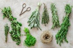 Ξεραίνοντας φρέσκες χορτάρια και πρασινάδα για τα τρόφιμα καρυκευμάτων στο τοπ σχέδιο άποψης υποβάθρου γραφείων κουζινών πετρών Στοκ φωτογραφίες με δικαίωμα ελεύθερης χρήσης
