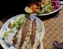 ξεραίνοντας ψάρια Στοκ Φωτογραφία