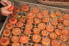 Ξεραίνοντας persimmon φρούτα στοκ φωτογραφίες με δικαίωμα ελεύθερης χρήσης