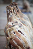 Ξεραίνοντας yak-κρέας Στοκ Εικόνες