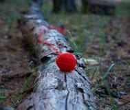 Ξετυλιγμένη μικρή κόκκινη σφαίρα του νήματος μαλλιού στοκ φωτογραφίες με δικαίωμα ελεύθερης χρήσης