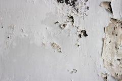 Ξεφλουδίζοντας άσπρος τοίχος στοκ φωτογραφία