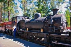 Ξεφυσώντας τραίνο και μηχανικός ατμού του Μπίλι Στοκ εικόνα με δικαίωμα ελεύθερης χρήσης