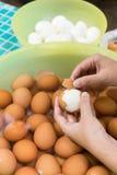 Ξεφλούδισμα αυγών Στοκ Εικόνες