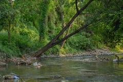 Ξεχασμένος ποταμός στοκ φωτογραφία με δικαίωμα ελεύθερης χρήσης