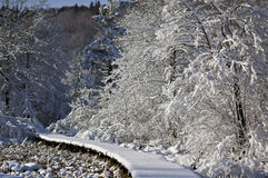 Ξεχασμένος χιονώδης ξύλινος στενός διάδρομος Στοκ εικόνα με δικαίωμα ελεύθερης χρήσης