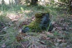 Ξεχασμένο παπούτσι σε μια παλαιά αποδοκιμασία Στοκ Φωτογραφία