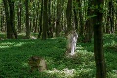 Ξεχασμένο παλαιό εγκαταλειμμένο νεκροταφείο στα ξύλα Σπασμένο σοβαρό monu Στοκ φωτογραφίες με δικαίωμα ελεύθερης χρήσης