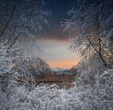 Ξημερώματα με το πρώτο χιόνι Στοκ φωτογραφίες με δικαίωμα ελεύθερης χρήσης
