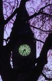 Ξημερώματα πύργων της Elizabeth Στοκ φωτογραφία με δικαίωμα ελεύθερης χρήσης