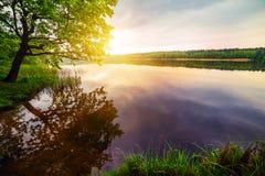 Ξημερώματα σε μια όμορφη λίμνη στα ξύλα Στοκ εικόνα με δικαίωμα ελεύθερης χρήσης