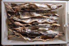 ξηρά αγορά ψαριών Στοκ Φωτογραφίες