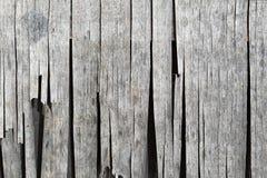 Ξηρά αποξηραμένη ξύλινη επένδυση Στοκ φωτογραφίες με δικαίωμα ελεύθερης χρήσης