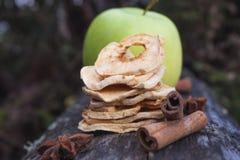 Ξηρά αφυδατωμένα μήλα Στοκ φωτογραφίες με δικαίωμα ελεύθερης χρήσης