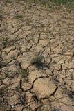 ξηρά γη ξηρασίας Στοκ φωτογραφία με δικαίωμα ελεύθερης χρήσης