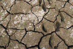 ξηρά γη Στοκ Εικόνα