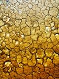 ξηρά γη Στοκ εικόνα με δικαίωμα ελεύθερης χρήσης
