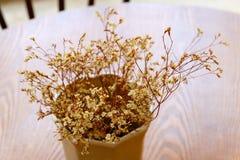 Ξηρά διακόσμηση λουλουδιών στη καφετερία στοκ εικόνα