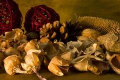 Ξηρά εγκαταστάσεις ποτ πουρί Aromatherapy και καρύδια λουλουδιών Στοκ εικόνα με δικαίωμα ελεύθερης χρήσης