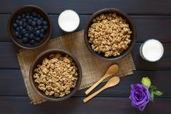 Ξηρά δημητριακά προγευμάτων μούρων και Oatmeal Στοκ Φωτογραφίες