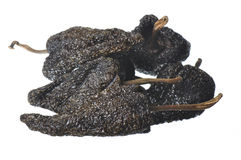 Ξηρά καυτά πιπέρια Στοκ Εικόνα