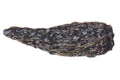 Ξηρά καυτά πιπέρια Στοκ Εικόνες