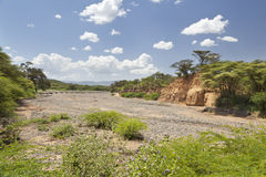 Ξηρά κοίτη του ποταμού στην Κένυα Στοκ Φωτογραφία