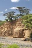 Ξηρά κοίτη του ποταμού στην Κένυα Στοκ εικόνες με δικαίωμα ελεύθερης χρήσης