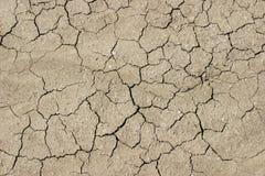 ξηρά λάσπη ρωγμών Στοκ Φωτογραφία