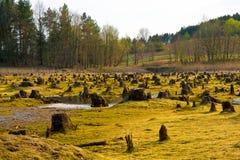 ξηρά λίμνη Στοκ φωτογραφία με δικαίωμα ελεύθερης χρήσης