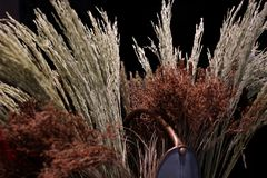 Ξηρά λουλούδια και ξηρά ανθοδέσμη ρυζιού flowerpot Στοκ φωτογραφία με δικαίωμα ελεύθερης χρήσης