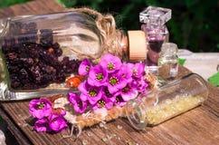 Ξηρά μούρα στο μπουκάλι γυαλιού και ρόδινα λουλούδια στο ξύλο Στοκ Εικόνες
