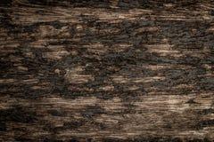 Ξηρά ξύλινη σύσταση, περίληψη Στοκ Φωτογραφίες
