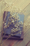 ξηρά λουλούδια βιβλίων Στοκ Φωτογραφίες