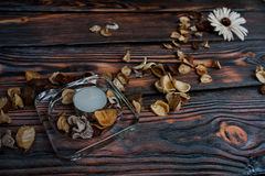 Ξηρά λουλούδια και κερί Στοκ Εικόνα