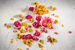 Ξηρά λουλούδια και πέταλα των τριαντάφυλλων Στοκ εικόνα με δικαίωμα ελεύθερης χρήσης