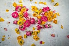 Ξηρά λουλούδια και πέταλα των τριαντάφυλλων Στοκ φωτογραφία με δικαίωμα ελεύθερης χρήσης