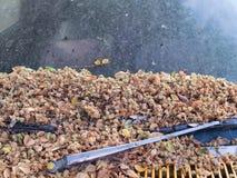 Ξηρά λουλούδια, κλαδίσκοι, ξηρά φύλλα διεσπαρμένα Στοκ εικόνες με δικαίωμα ελεύθερης χρήσης