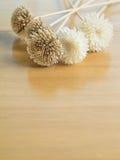 Ξηρά λουλούδια στον ξύλινο πίνακα. Στοκ εικόνες με δικαίωμα ελεύθερης χρήσης