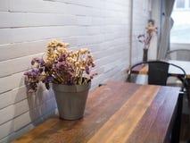 Ξηρά λουλούδια flowerpot στοκ εικόνες