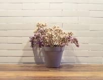 Ξηρά λουλούδια flowerpot στοκ φωτογραφία