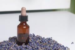Ξηρά λουλούδια lavender Στοκ εικόνα με δικαίωμα ελεύθερης χρήσης