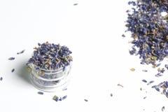 Ξηρά λουλούδια lavender Στοκ Φωτογραφία