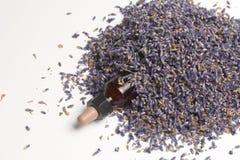 Ξηρά λουλούδια lavender Στοκ φωτογραφία με δικαίωμα ελεύθερης χρήσης