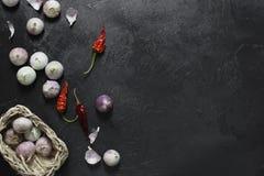 Ξηρά πιπέρια και σκόρδο τσίλι στο σκοτεινό υπόβαθρο στοκ φωτογραφία με δικαίωμα ελεύθερης χρήσης